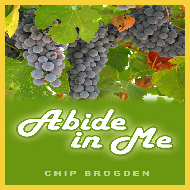 ABIDE WITH ME: Fingerstyle Guitar Lesson + TAB by ...