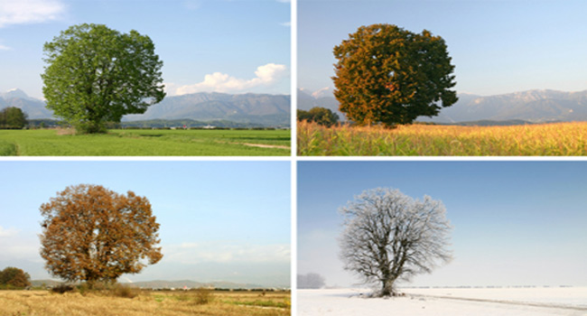 Four Spiritual Seasons