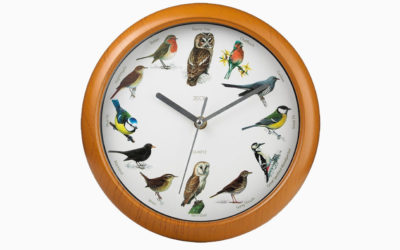 The Bird Clock: A Lesson in Grace