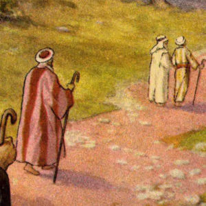 The Discipleship Test
