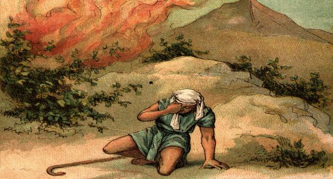The Prophetic Savant