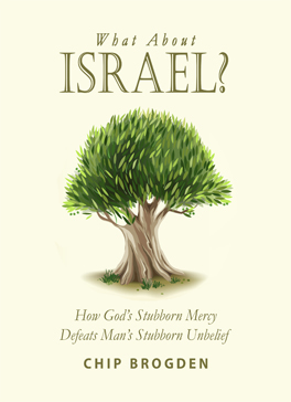 what-about-israel-cover-lg