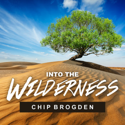 Into the Wilderness (MP3)